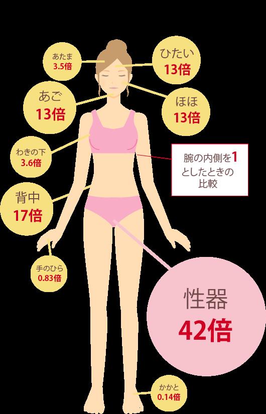 経皮吸収率