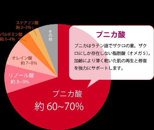 ザクロ グラフ