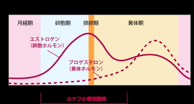 女性ホルモンと月経周期