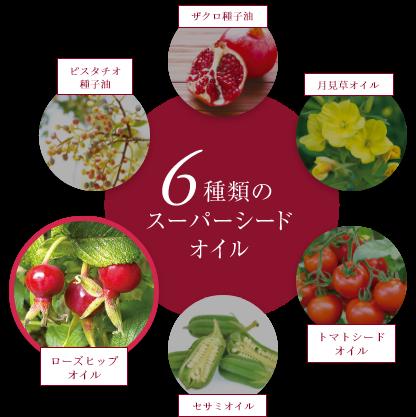6種類のスーパーシードオイル
